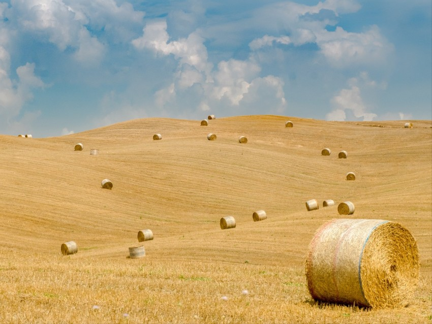 field, straw, bales, hills, landscape background@toppng.com
