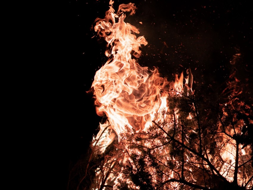 free PNG fire, flame, branches, bonfire background PNG images transparent