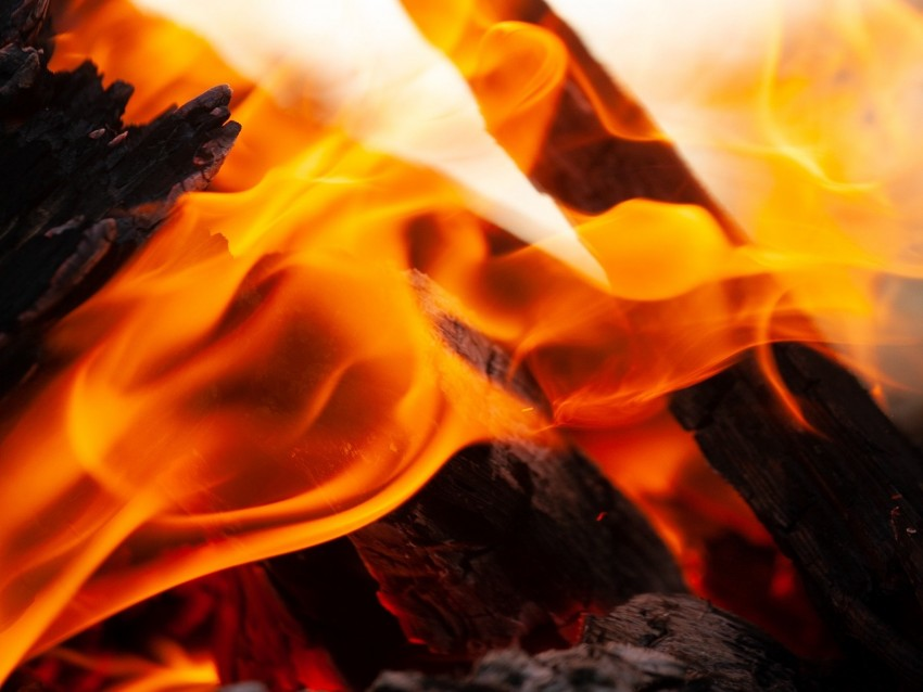 free PNG fire, flame, firewood, embers, ash, bonfire background PNG images transparent