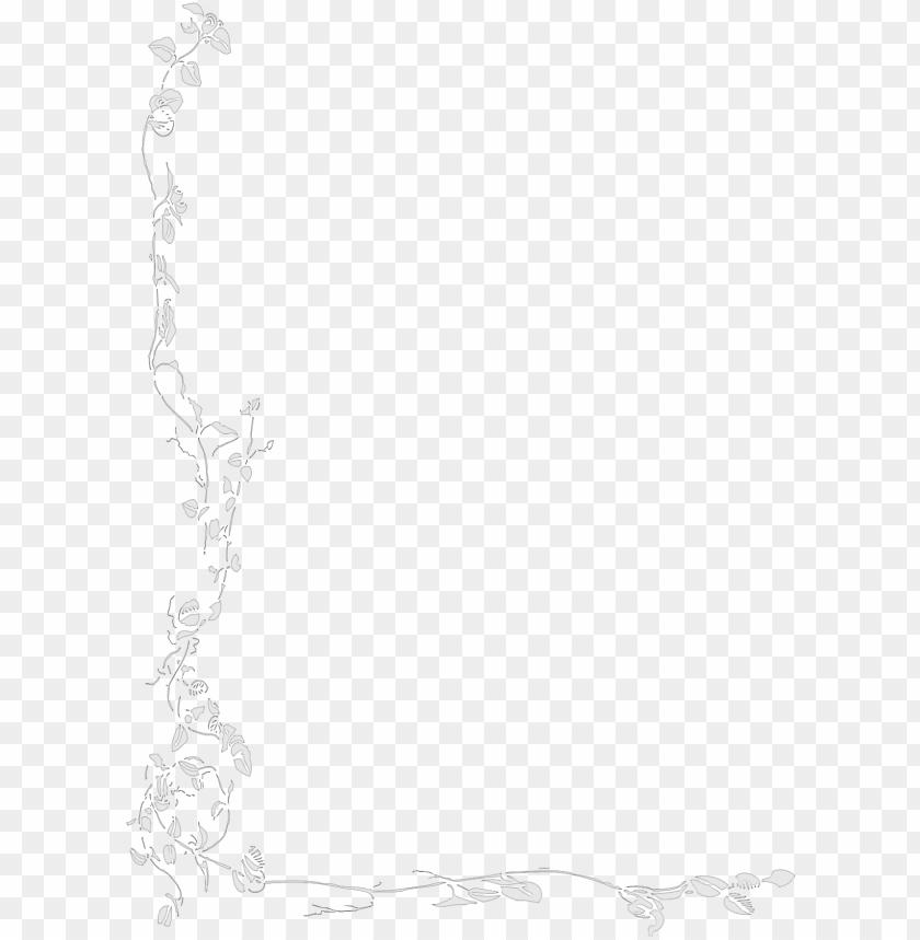 free PNG floral background image arts - white floral border PNG image with transparent background PNG images transparent
