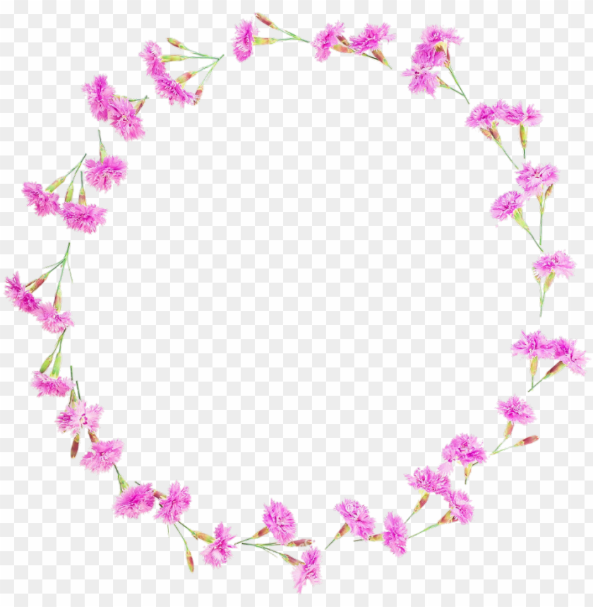 free PNG floral flowers flower round frames frame borders border - floral desi PNG image with transparent background PNG images transparent