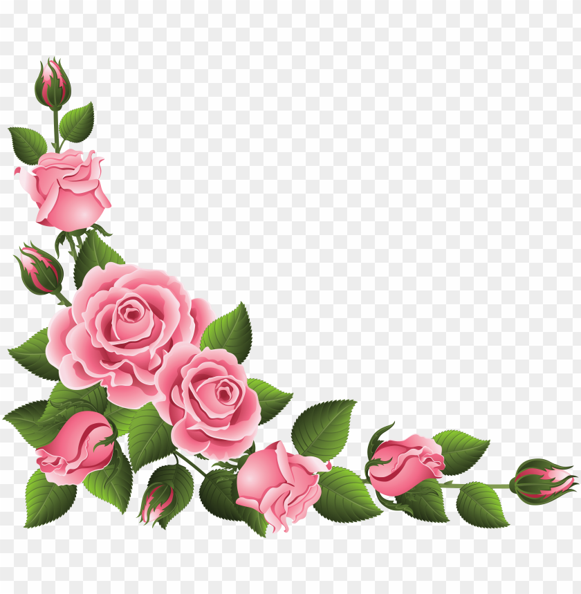 Floral Hand Painted Clip Art Watercolor Flower Clipart Rose Corner Border Png Image With Transparent Background Toppng