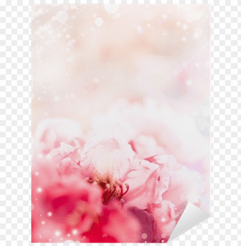 free PNG floral romantic pastel border background with red flowers - floral desi PNG image with transparent background PNG images transparent