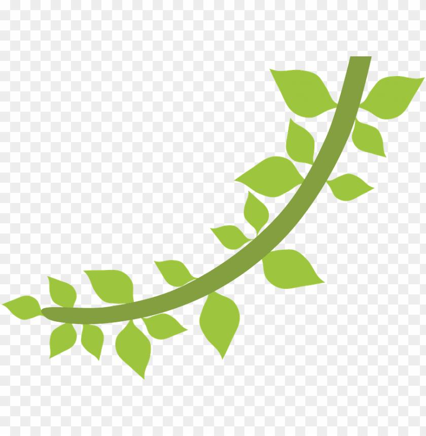 free PNG floresta e safari - folhas safari desenho PNG image with transparent background PNG images transparent