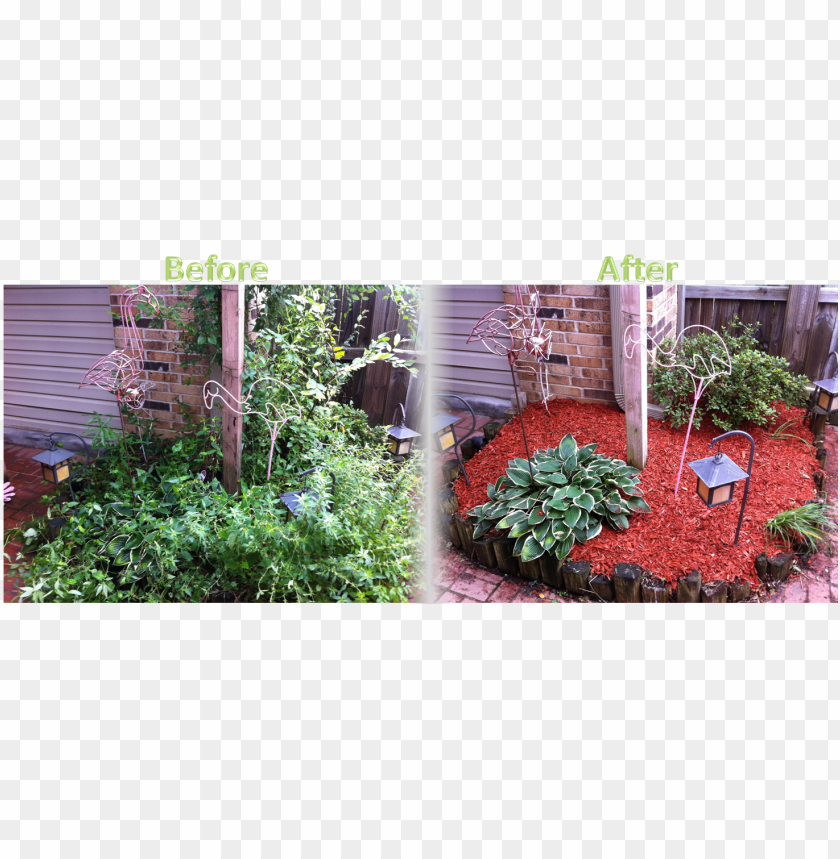 free PNG flower bed maintenance - flower bed before and after mulch PNG image with transparent background PNG images transparent