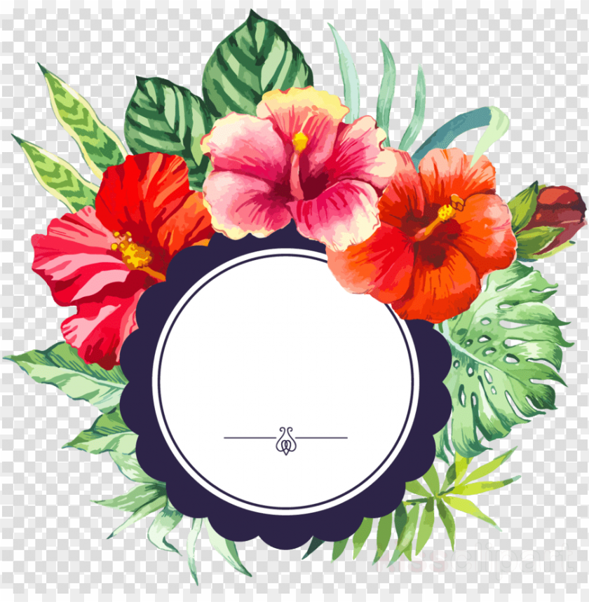 free PNG flower border PNG image with transparent background PNG images transparent