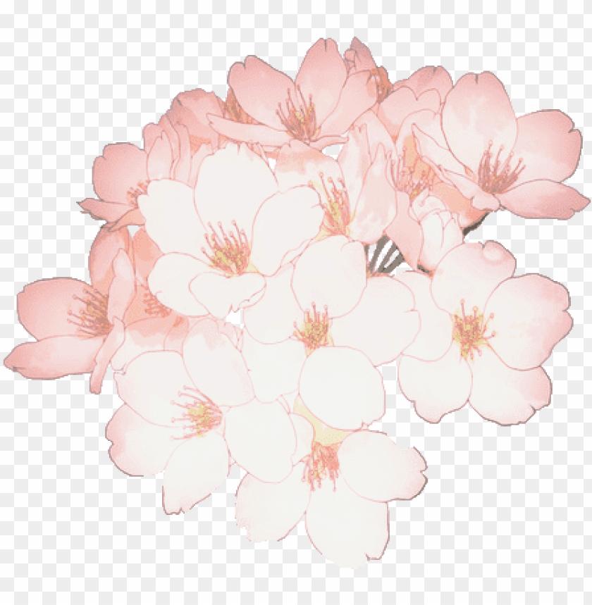 free PNG flower flowers sakura cherryblossom tumblr kawaii ftest - sakura flower png kawaii PNG image with transparent background PNG images transparent