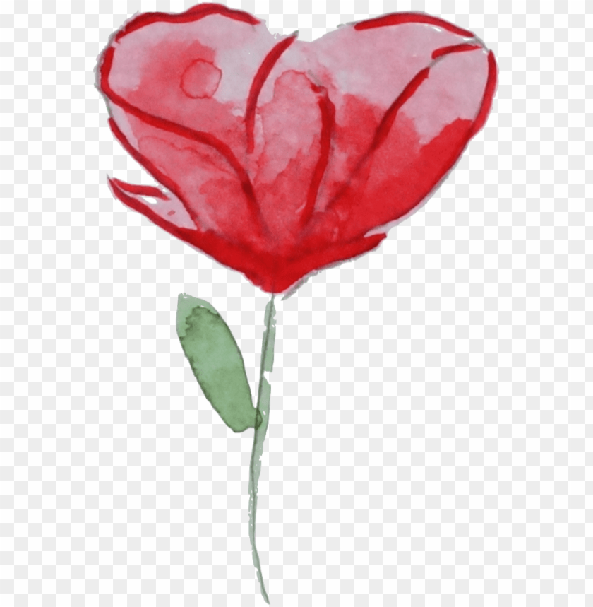 free PNG flower garden roses watercolor painting poppy clip - garden roses PNG image with transparent background PNG images transparent