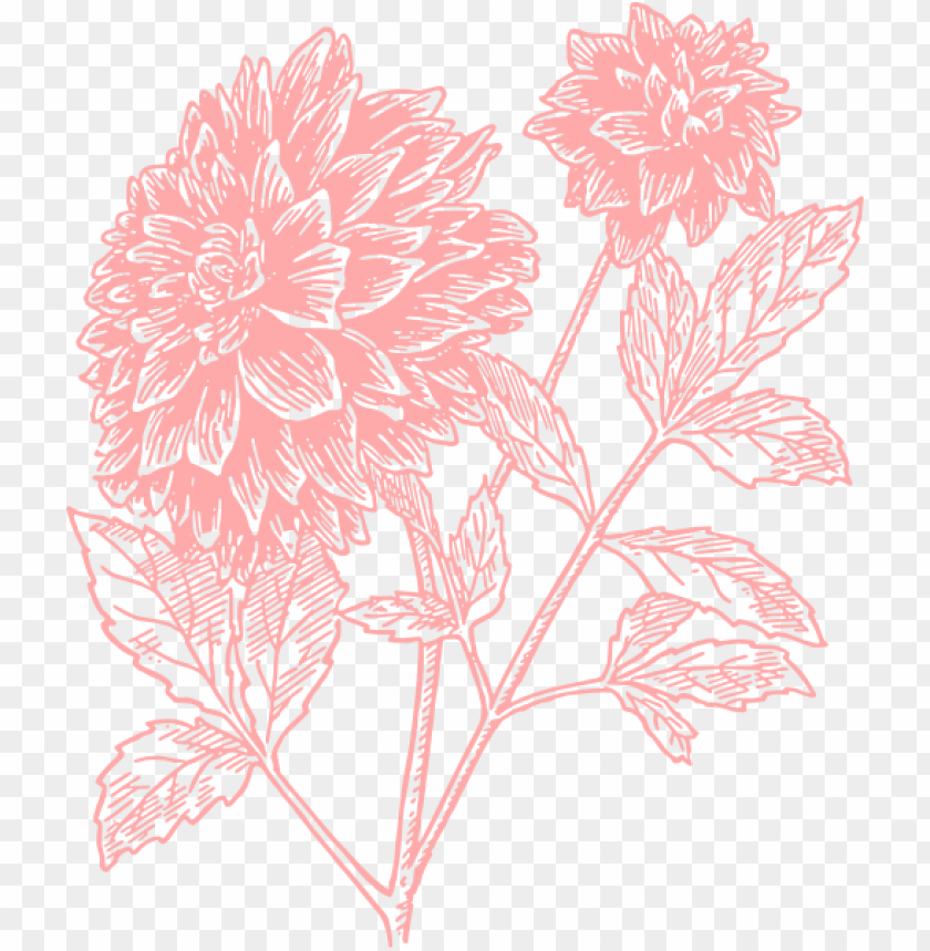 free PNG flower print PNG image with transparent background PNG images transparent