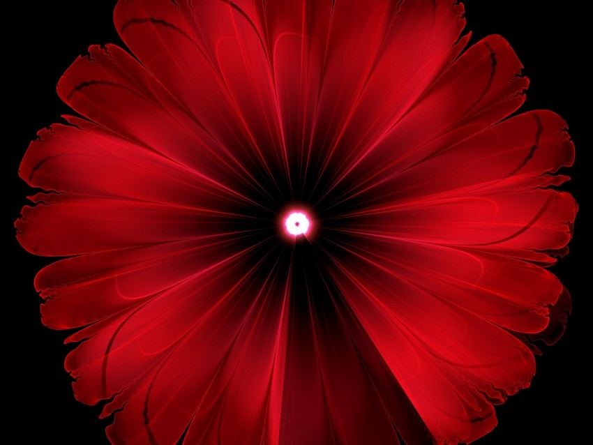 free PNG flower, red, glow, fractal, digital, abstraction background PNG images transparent