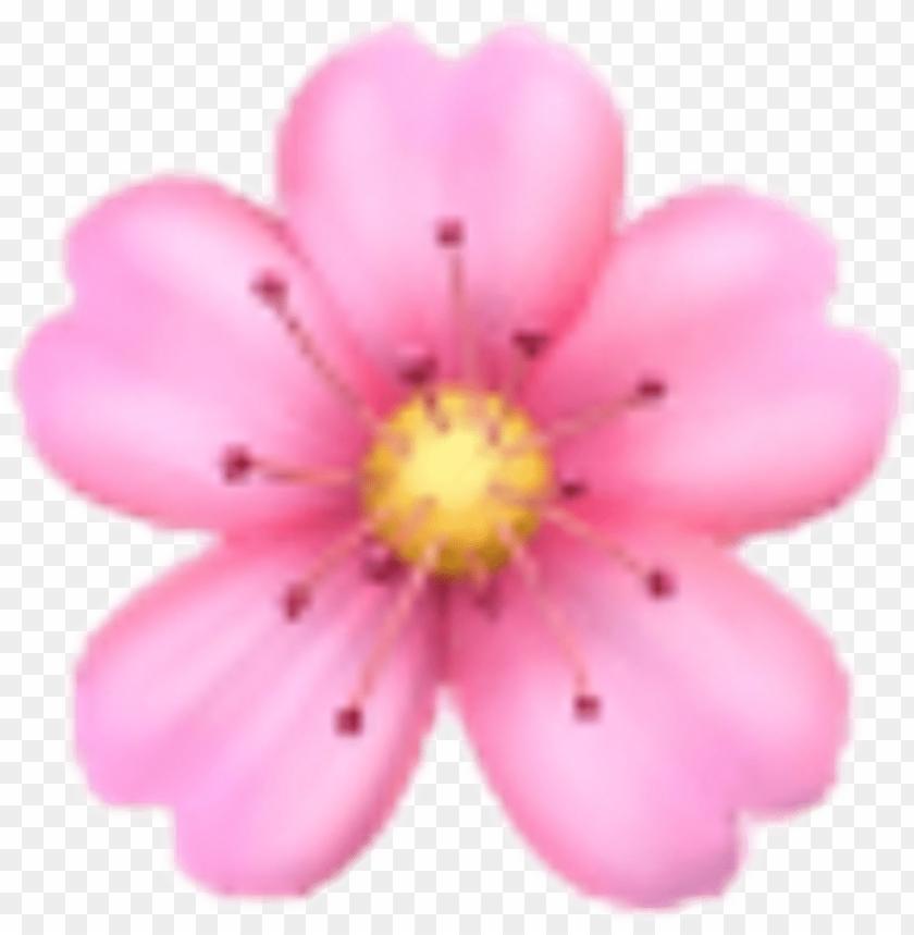 free PNG flower sakura emoji emojis rose sticker ios iphone - iphone flower emoji PNG image with transparent background PNG images transparent