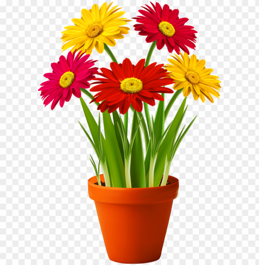 free PNG flower with pot PNG image with transparent background PNG images transparent