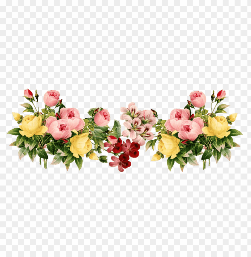 free PNG Download flowers png images background PNG images transparent