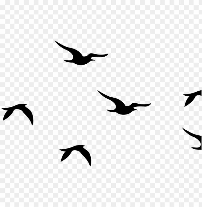 Flying Bird Clip Art