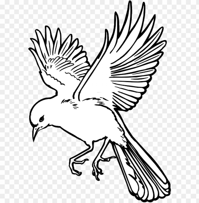 Flying Bird Drawing Flying Bird Drawing Art Png Image With Transparent Background Toppng