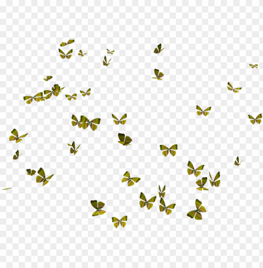 free PNG flying butterflies png - butterflies PNG image with transparent background PNG images transparent