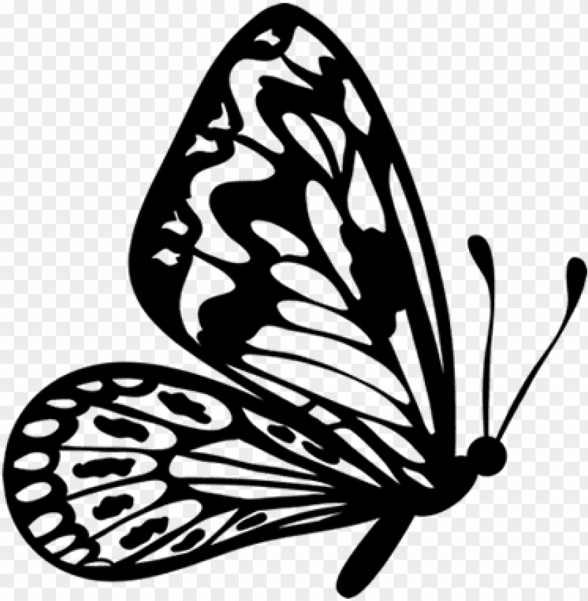 free PNG flying butterfly outline clipart - flying butterfly clipart black and white PNG image with transparent background PNG images transparent