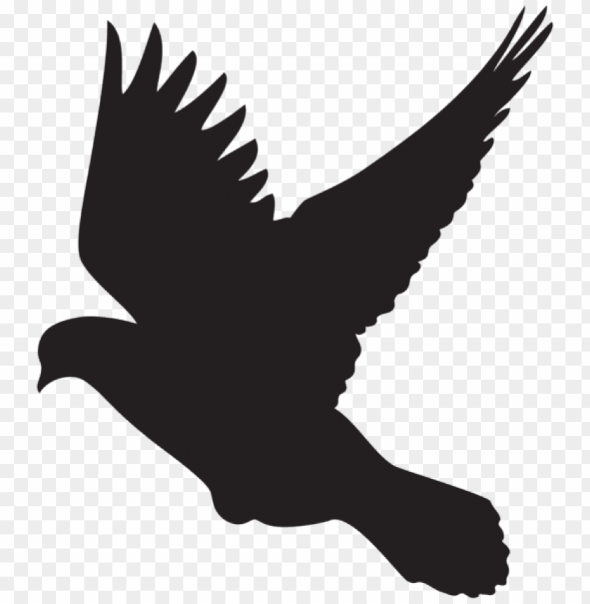 free PNG flying dove silhouette png png - Free PNG Images PNG images transparent