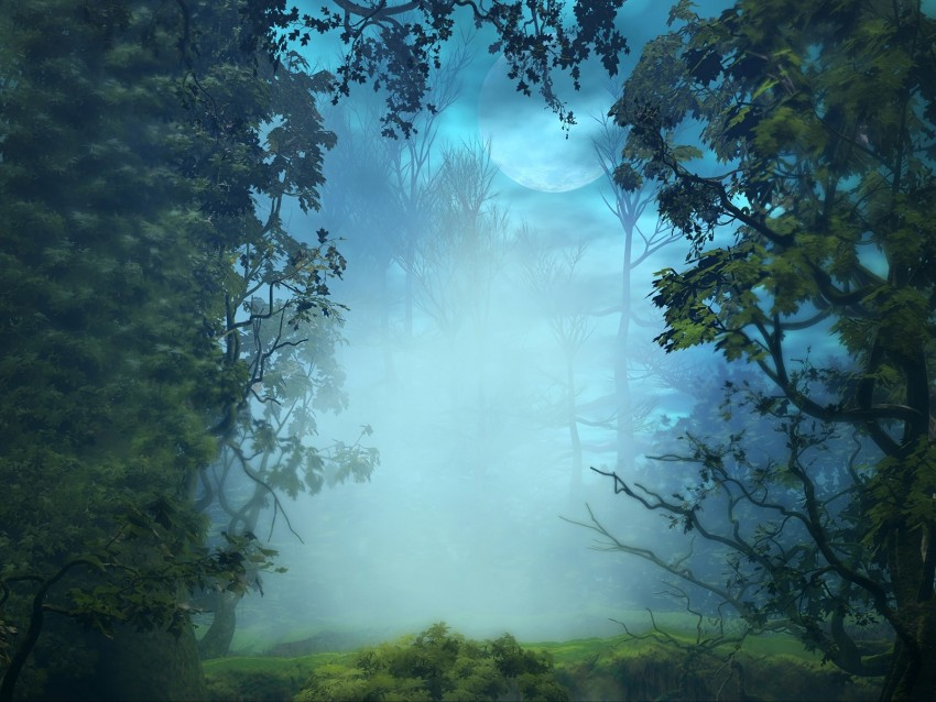 free PNG fog, trees, art, forest, branches background PNG images transparent