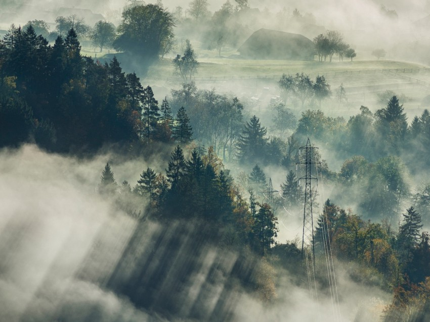 free PNG fog, trees, top view, forest, bled, slovenia background PNG images transparent