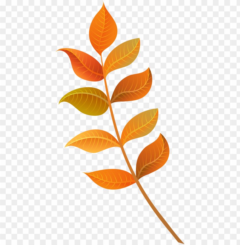 free PNG foliage clipart fall decoration - fall leaf clipart PNG image with transparent background PNG images transparent