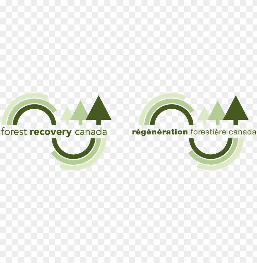 free PNG forest recovery canada is the national tree planting - forest PNG image with transparent background PNG images transparent