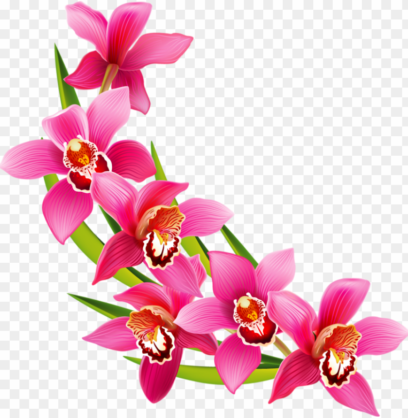 free PNG Фотки flower art, flower prints, wedding frames, clip - flower clipart PNG image with transparent background PNG images transparent