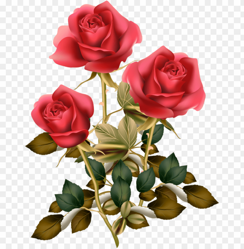 free PNG Фотки red rose png, red roses, rose clipart, vintage - flower good morning roses PNG image with transparent background PNG images transparent