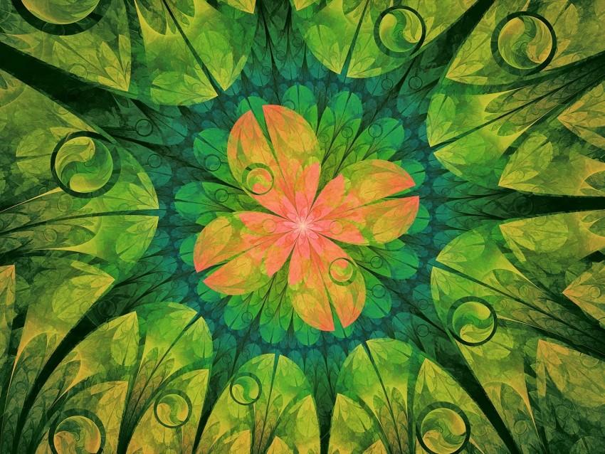 free PNG fractal, pattern, flower, digital, abstraction background PNG images transparent
