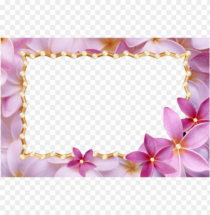 free PNG frame love frame png flower frame wedding frame - meaning of judy a PNG image with transparent background PNG images transparent