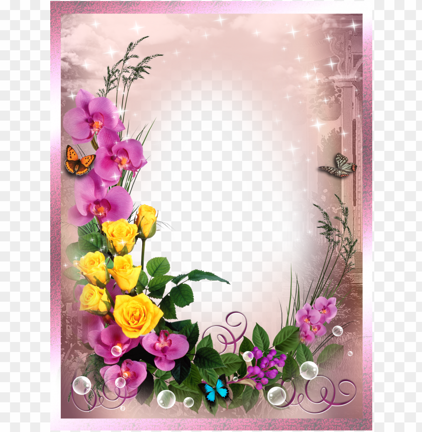 free PNG frame with bird png image, beautiful printable frame - hd photo frame PNG image with transparent background PNG images transparent