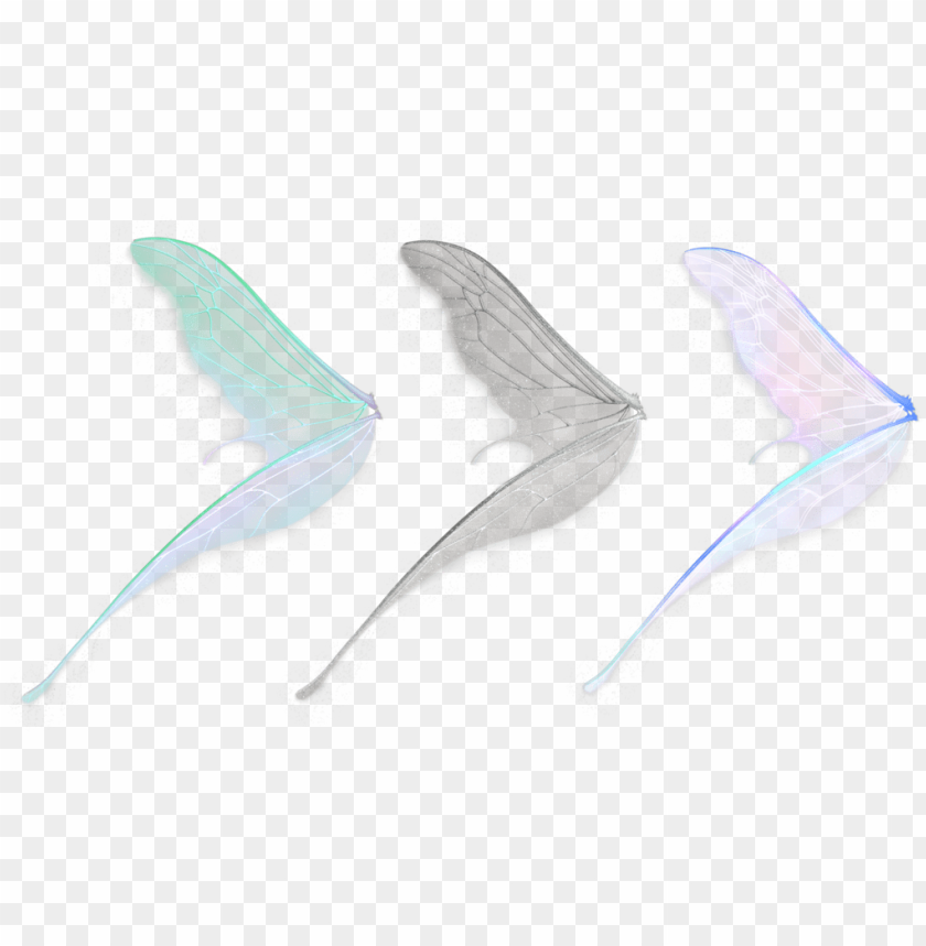 free PNG free download fairy wings png images - fairy wings transparent PNG image with transparent background PNG images transparent