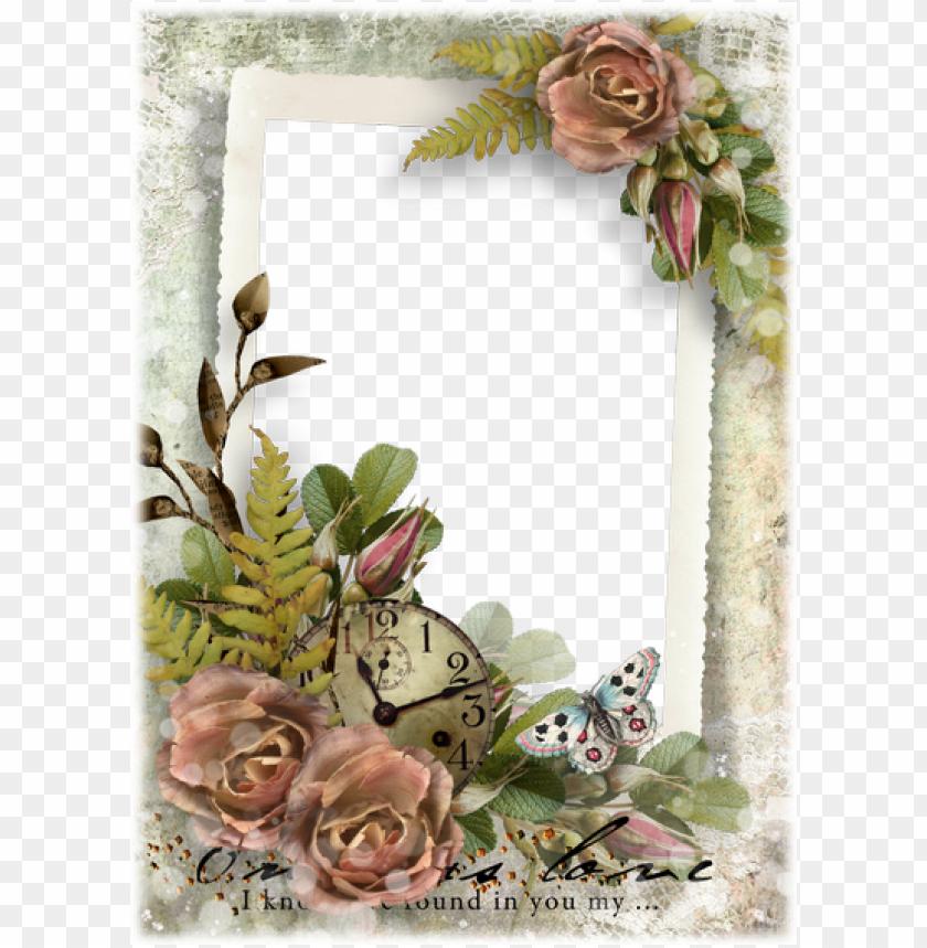 free PNG free photo frames › free frames set › nature frames - transparent beautiful frames PNG image with transparent background PNG images transparent