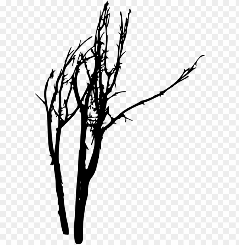 free png bare tree silhouette png images transparent - portable network graphics PNG image with transparent background@toppng.com