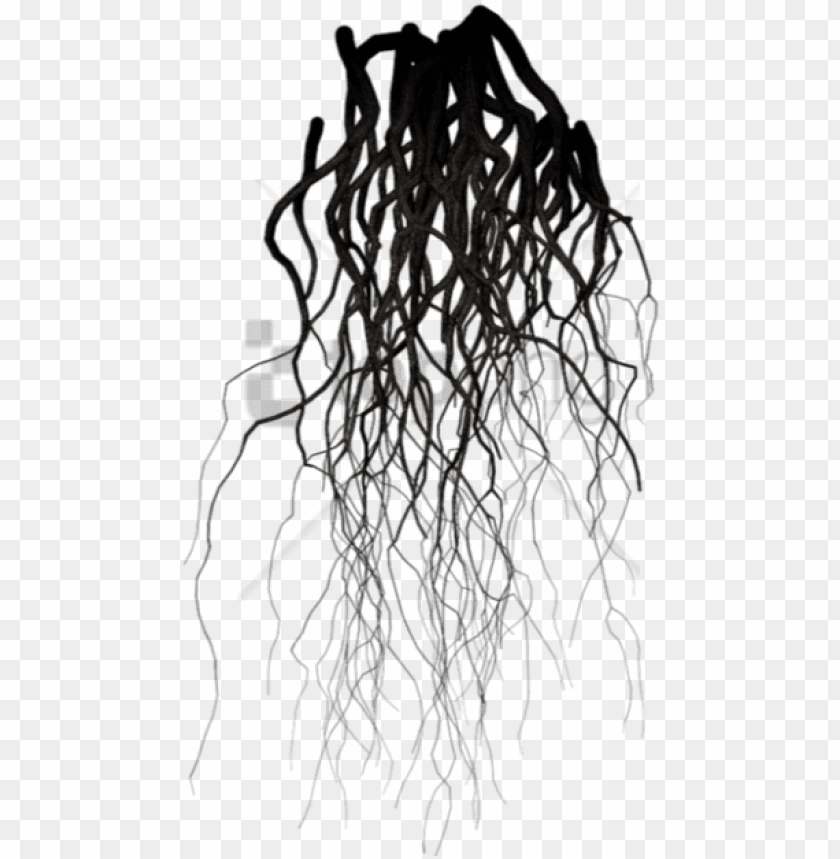 free PNG free png black veins png image with transparent background - transparent background roots PNG image with transparent background PNG images transparent