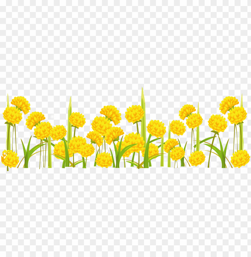 free PNG free png dandelion png images transparent - transparent background yellow flower clipart transparent PNG image with transparent background PNG images transparent