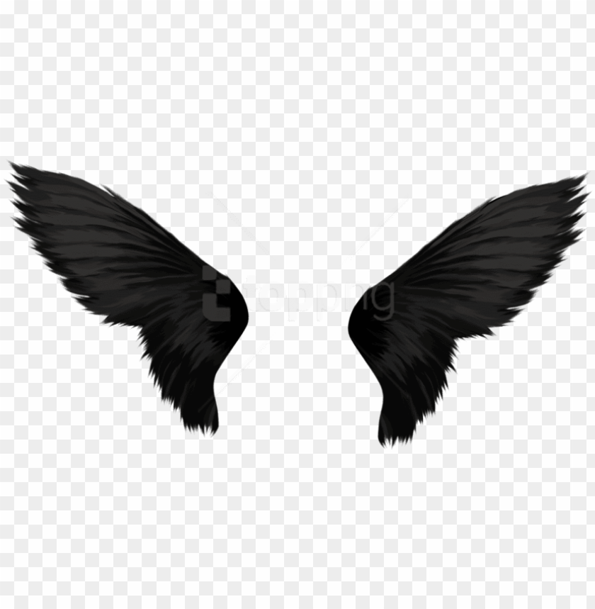 free PNG free png download black wings png images background - transparent background wings PNG image with transparent background PNG images transparent