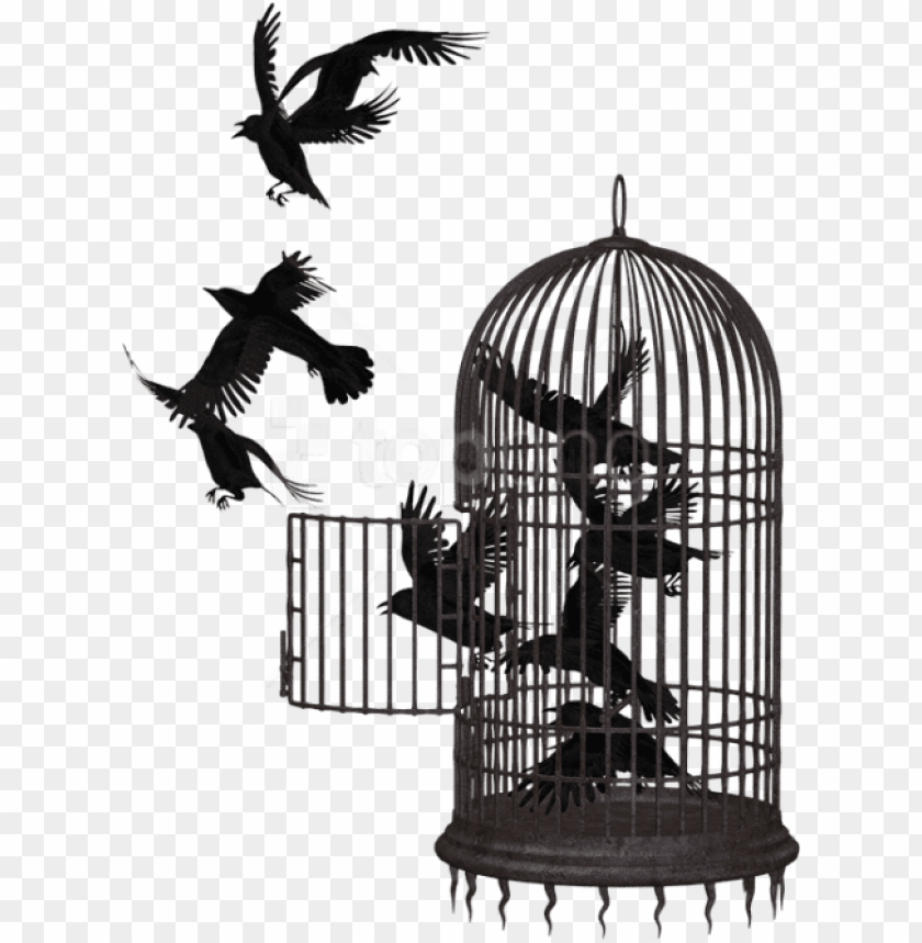 free PNG free png download cage bird crow clipart png photo - caged bird freedom quotes PNG image with transparent background PNG images transparent