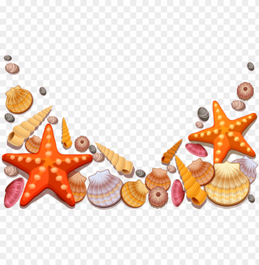 free PNG free png download sea shells decor png vector clipart - sea shells vector PNG image with transparent background PNG images transparent