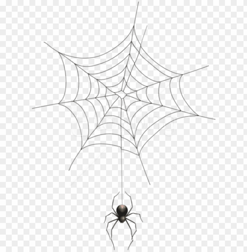 free PNG free png download spider and web transparent png images - spider web transparent background PNG image with transparent background PNG images transparent