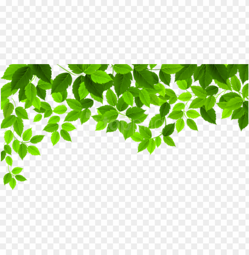 free PNG free png download spring leaves decoration png images - spring PNG image with transparent background PNG images transparent