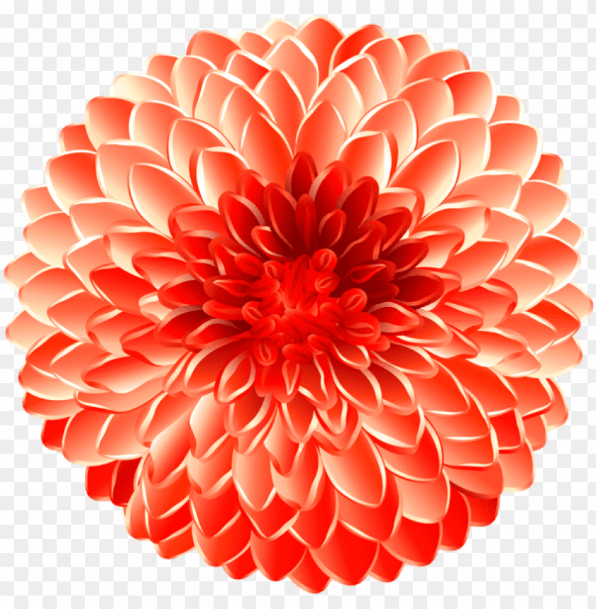 free PNG free png flower transpa png images background png images - dahlia PNG image with transparent background PNG images transparent