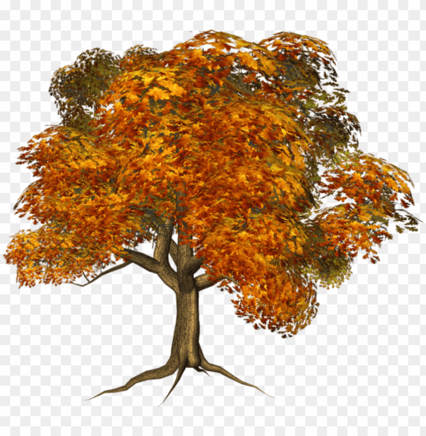 free PNG free png large fall tree png images transparent - transparent background autumn tree clipart PNG image with transparent background PNG images transparent