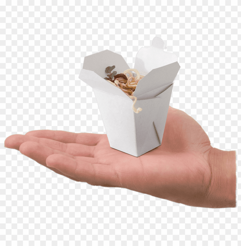 free PNG Download Mini Take Away Box on Hand png images background PNG images transparent