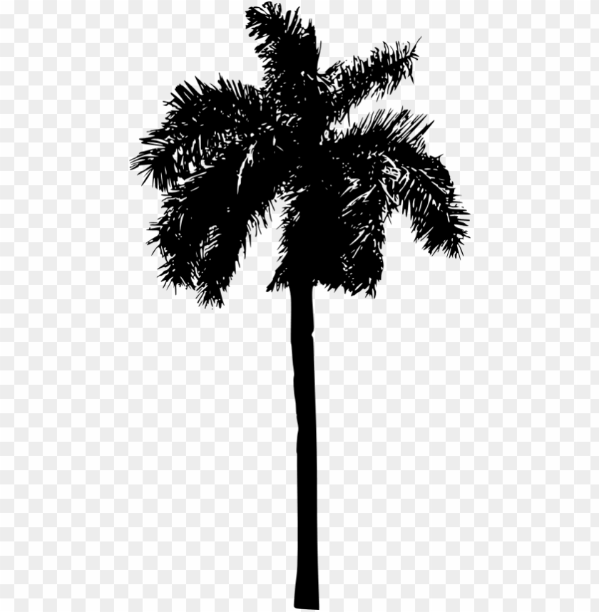 free PNG free png palm tree png images transparent - palm tree silhouette PNG image with transparent background PNG images transparent