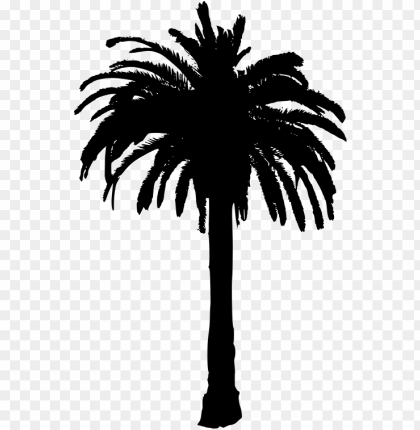 free PNG free png palm tree png images transparent - palm tree silhouette transparent background PNG image with transparent background PNG images transparent