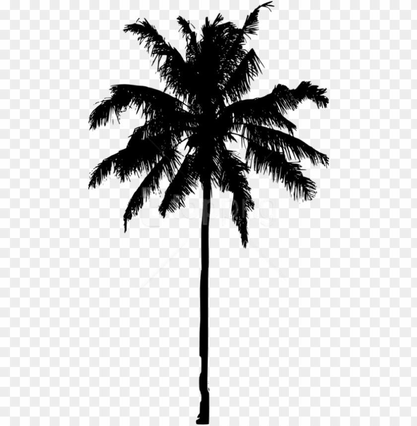 free PNG free png palm tree silhouette png images transparent - palm tree silhouette PNG image with transparent background PNG images transparent
