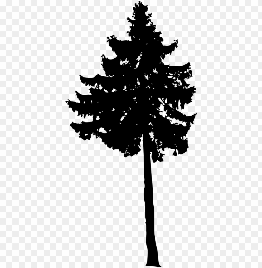 free PNG free png pine tree silhouette png images transparent - portable network graphics PNG image with transparent background PNG images transparent