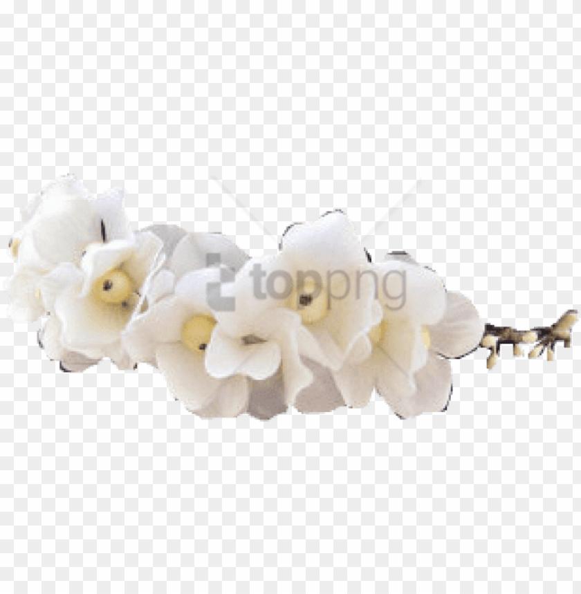 free PNG free png tumblr transparent flower crown png image - transparent white flower crow PNG image with transparent background PNG images transparent