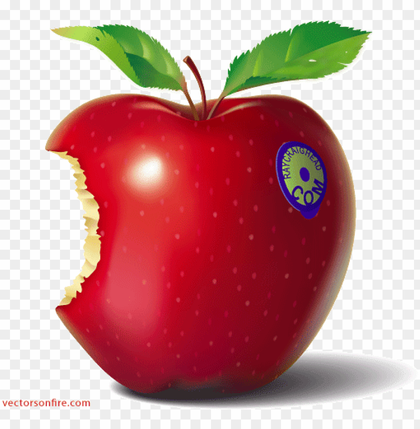 free PNG free red eaten apple by ray craighead psd files, vectors - knowledge bytes PNG image with transparent background PNG images transparent
